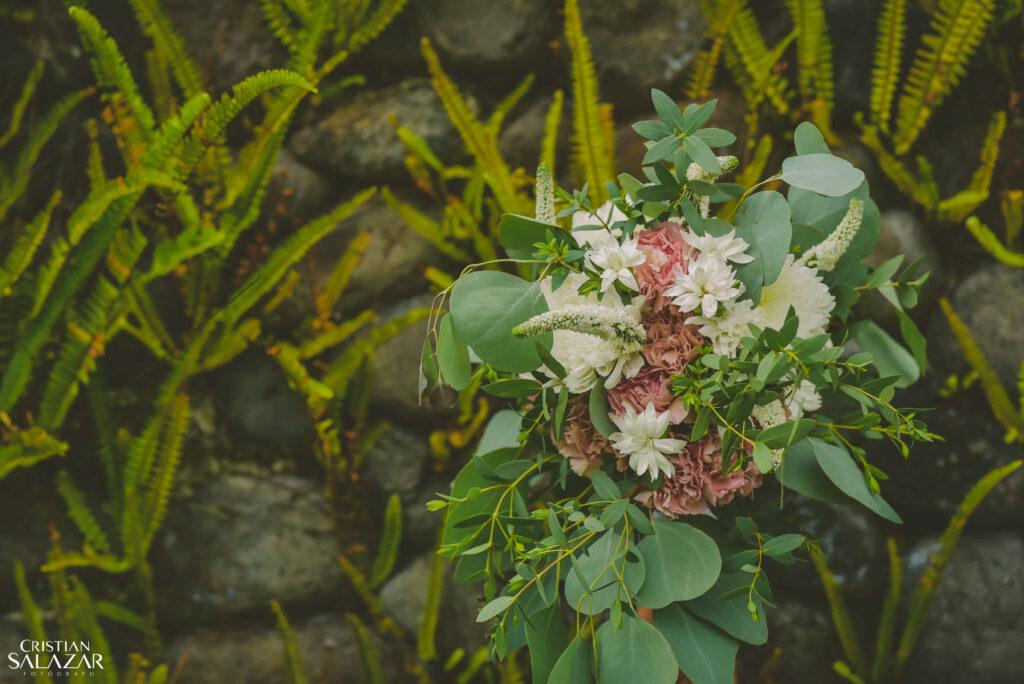 Elegir flores y follajes de bajo costo